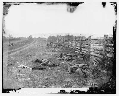 Aftermath of Antietam, Sept. 17, 1862
